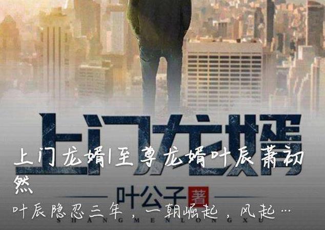 叶辰萧初然小说大结局