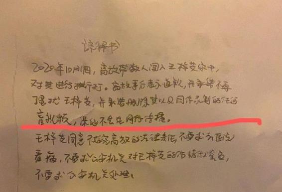 王梓芠回应插足:是留宿关系